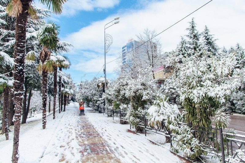 Зимовка в Сочи: к чему нужно быть готовым