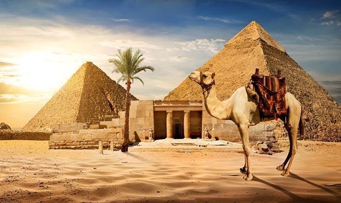 Что известно по Египту на данный момент