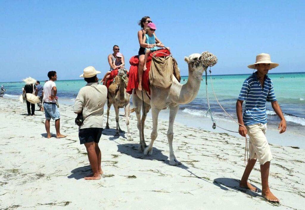 Туроператоры начинают отменять рейсы в Тунис и Кипр