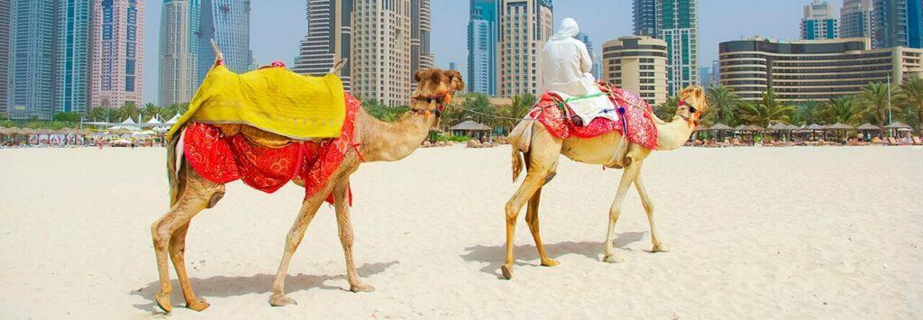 Дубай: памятка для туристов. Культурные особенности ОАЭ. За что можно получить штраф?